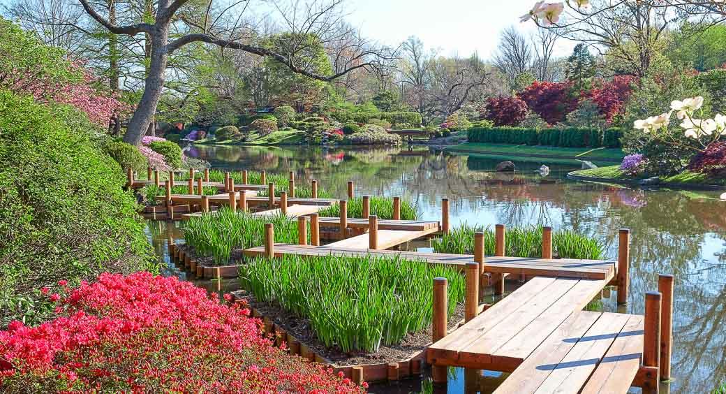 Cherry Blossom Festivals - Missouri Botanical Gardens