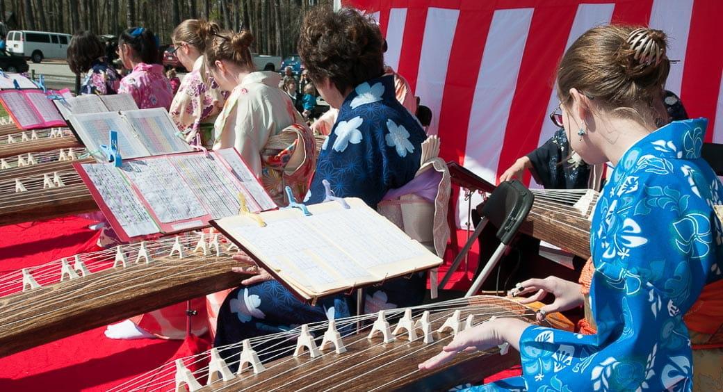 Cherry Blossom Festivals - Virginia Beach Cherry Blossom Festival
