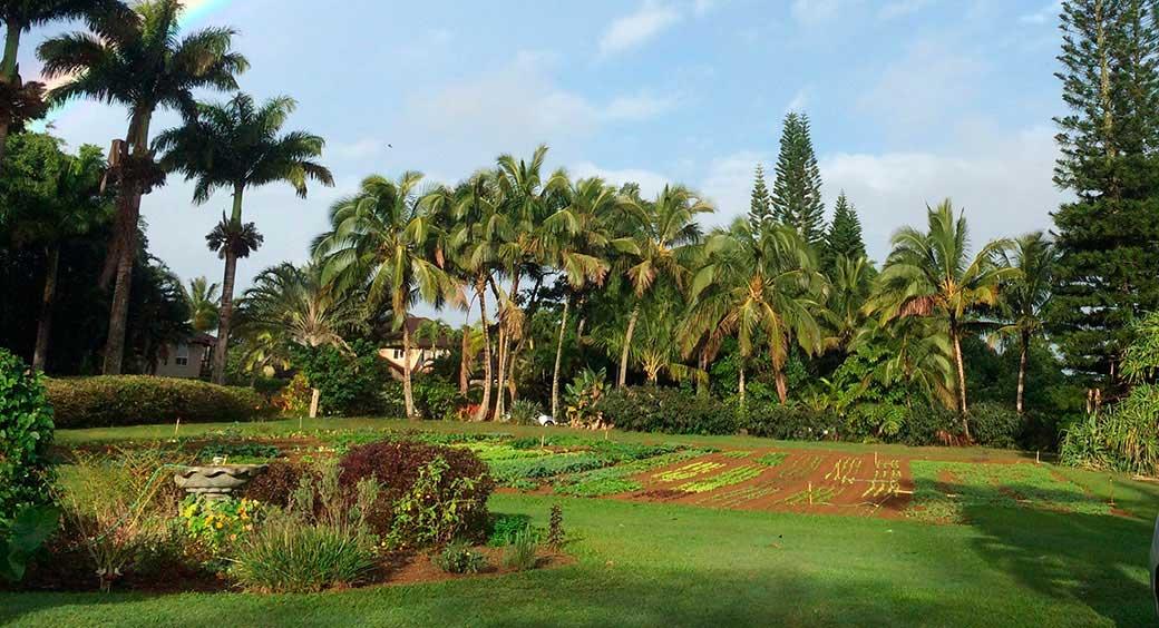 Travel Spotlights - Hawaii