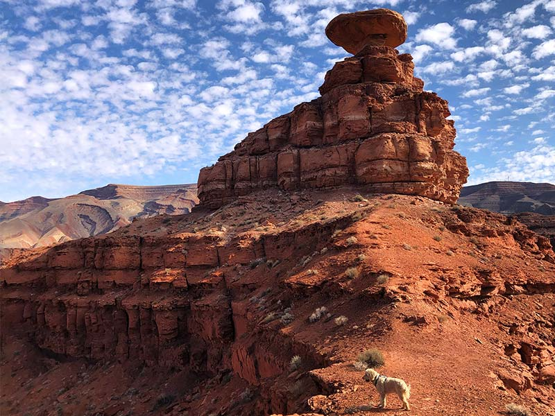 Runner Up: Mexican Hat Rock in Mexican Hat, UT | Submitted by: Morgan C.