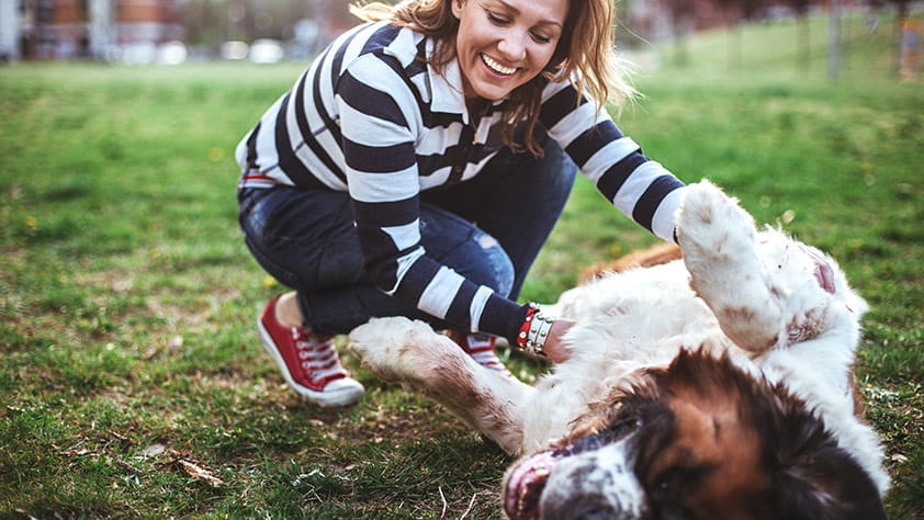 Woman Laughing and Enjoying Playing with Dog in Park