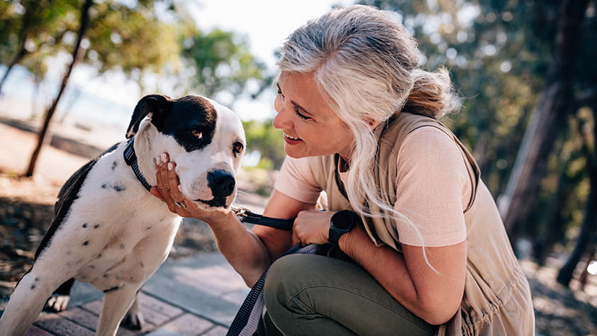 Happy senior woman petting a dog during her morning walk outside