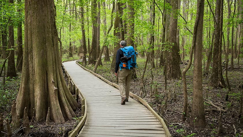 Man with a blue backpack hiking through a forest
