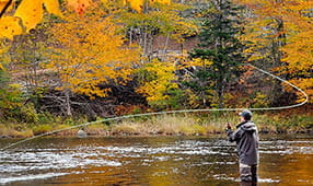 5 Fall Foliage Vacations for Active Leaf Peepers - Fly Fishing