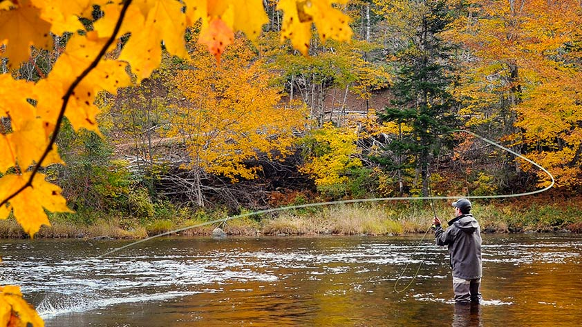 5 Fall Foliage Vacations for Active Leaf Peepers - Fly Fishing in Shenandoah National Park, Virginia