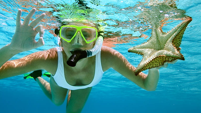 Woman snorkeling with a starfish, showing the OK hand gesture underwater