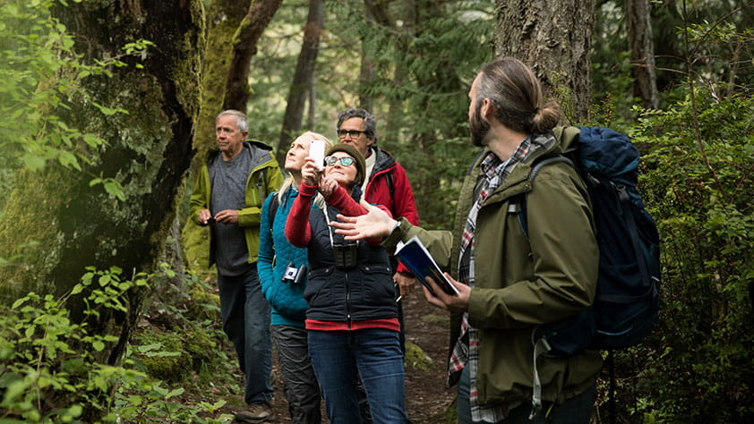 Trail guide leading active senior hikers in woods