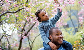 Son Riding on Top of Father's Shoulders