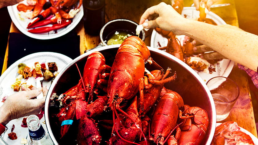 Close-up of lobsters in a pot on a picnic table