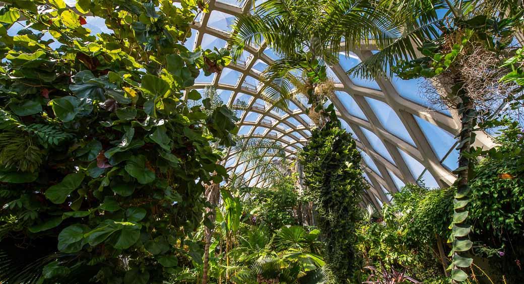 Denver Botanic Gardens in Denver, Colorado
