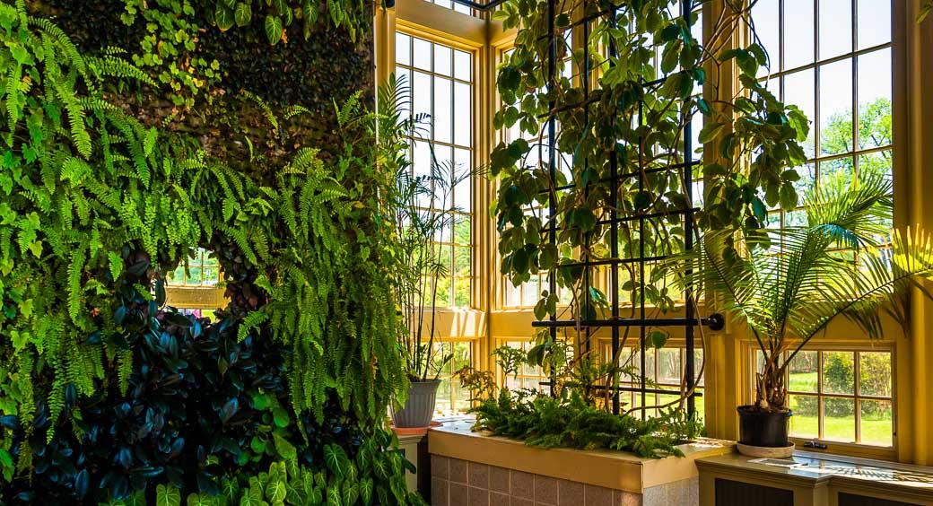 Rawlings Conservatory & Botanical Gardens in Baltimore, Maryland