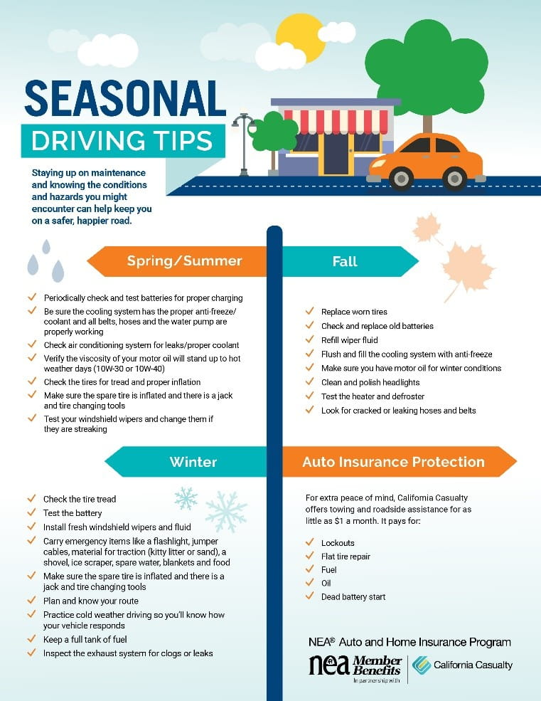Seasonal Driving Tips to Help You Stay Safe Year-Round | NEA