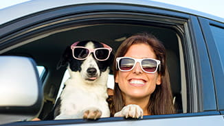 Smiling Woman and Her Dog Both Wearing Sunglasses and Looking Out Car Window