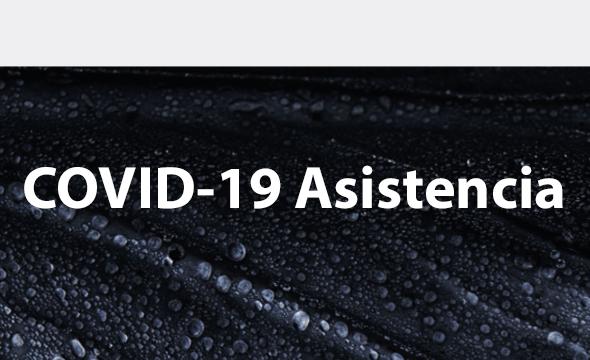 COVID-19 Asistencia